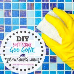 Easy DIY Homemade Goo Gone, Soft Scrub and Dishwashing Liquid
