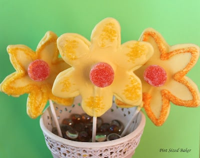 PS Daffodil Lollipops (31)