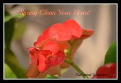 Spring Clean Your Heart! Part II