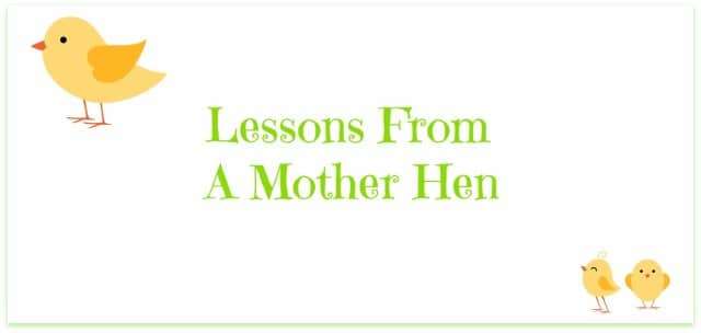 lessons-from