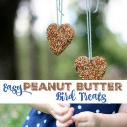 treats for birds