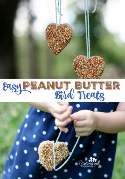 Easy Peanut Butter Bird Treats