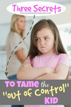 """Three Secrets to Tame the """"Out of Control"""" Kid"""