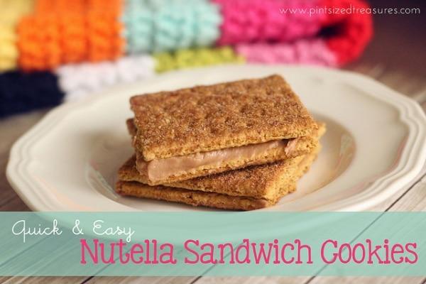 graham cracker sandwhiches