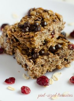 Cranberry Chocolate Granola Bars — Frugal and Easy!