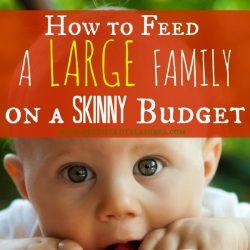 grocery budget ideas