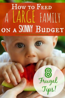 How to Feed a Large Family on a Skinny Budget