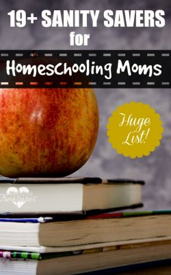 Sanity Saving Tips from Professional Home-schooling Moms