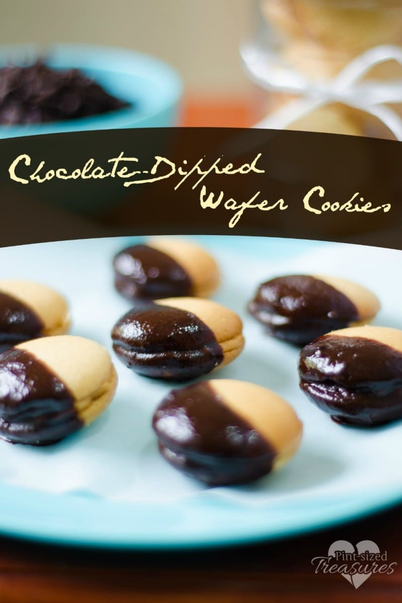 easy chocolate dipped cookies recipe