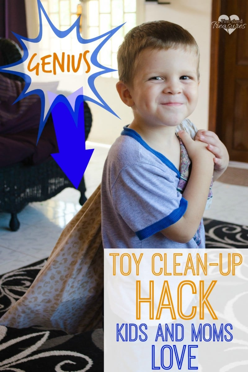 genius toy clean-up idea