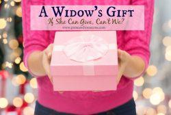 The Widow's Gift