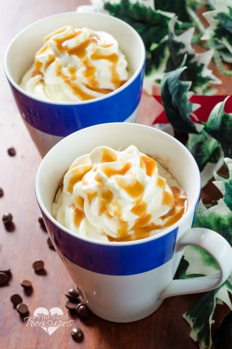two ingredient hot cocoa