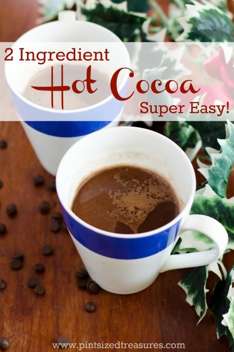 two ingredient easy hot cocoa