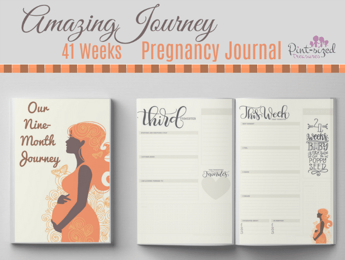 An amazing,printable pregnancy journal that will help moms remember the details their pregnancy for years to come! #Pregnancy #journal #pregnancyhelp #pregnancygift #newmom #Pregnancyprintable #pregnancychart