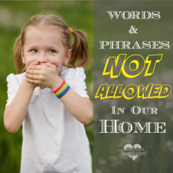 Six Popular Phrases that are Not Allowed in Our Home