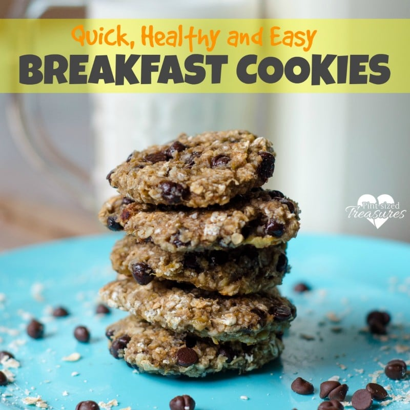 three ingredient breakfast cookies