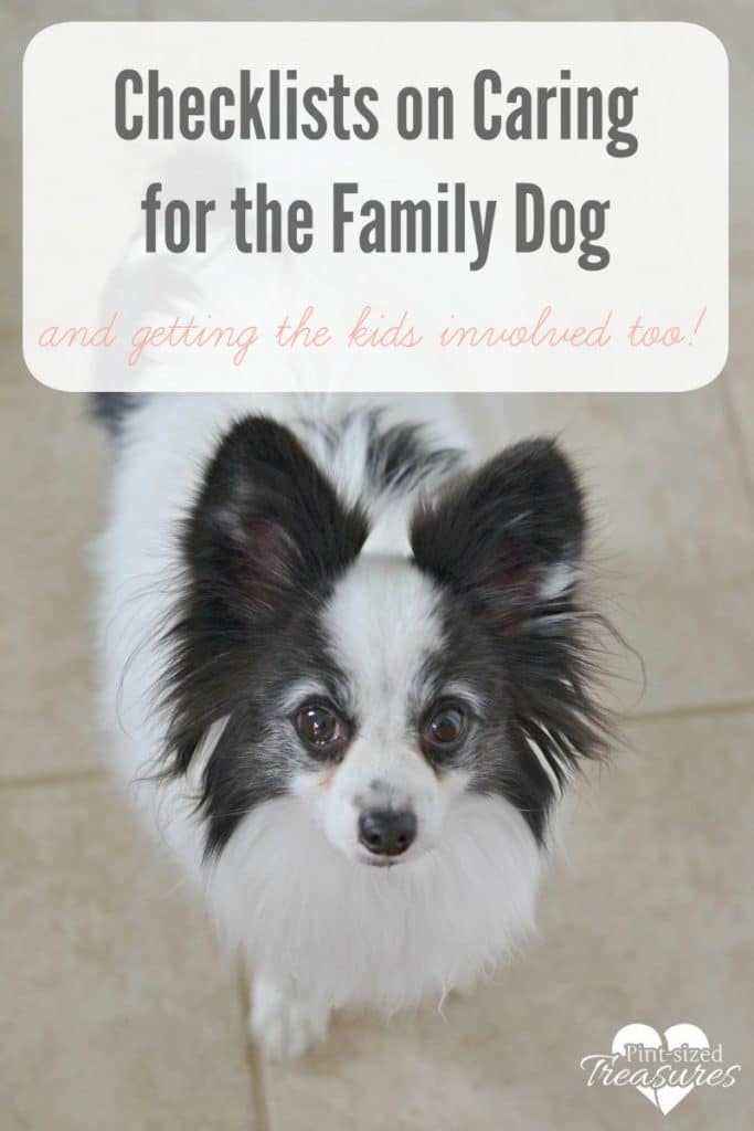 checklists for pet care