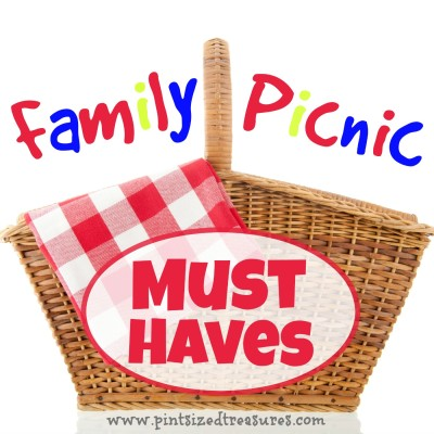 fun family picnic must haves