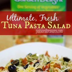 ultimate pasta salad with tuna recipe