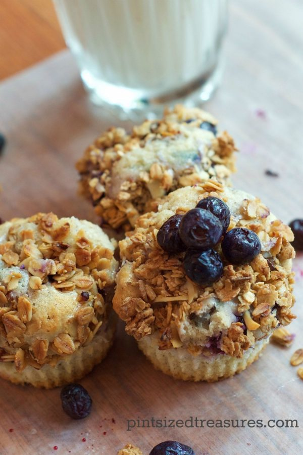 blueberry cheesecake muffin recipe
