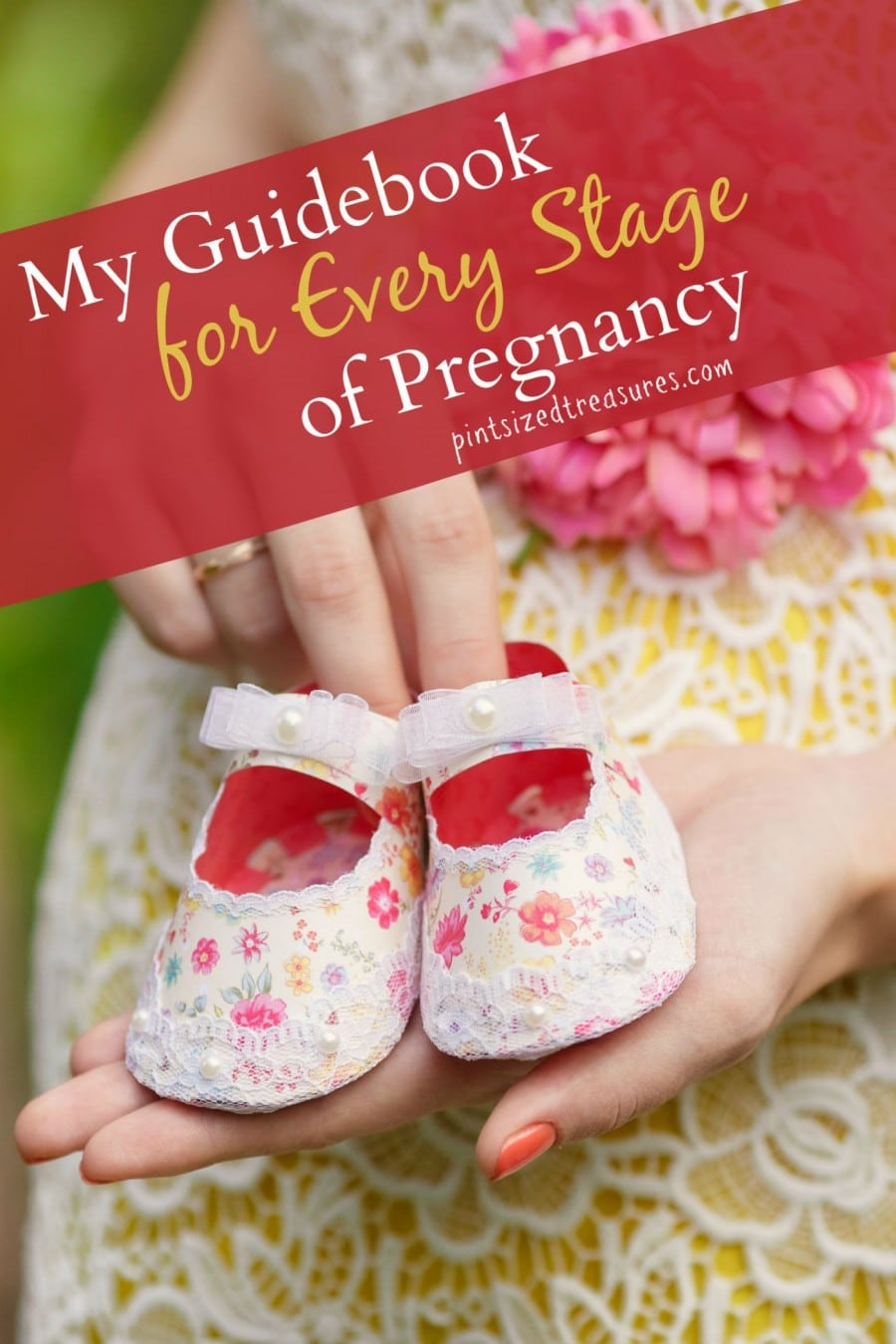 guide books needed in pregnancy