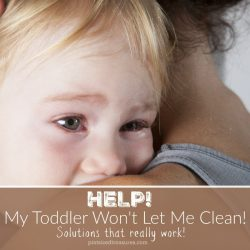 Help! My Toddler Won't Let me Clean!