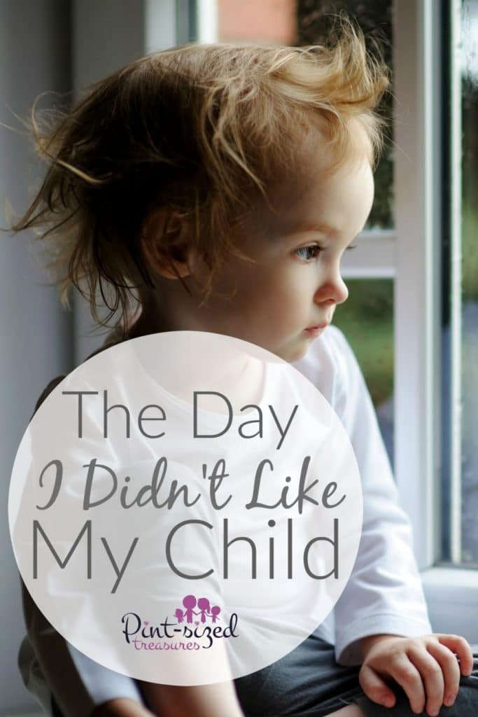 The Day I Didn't Like My Child