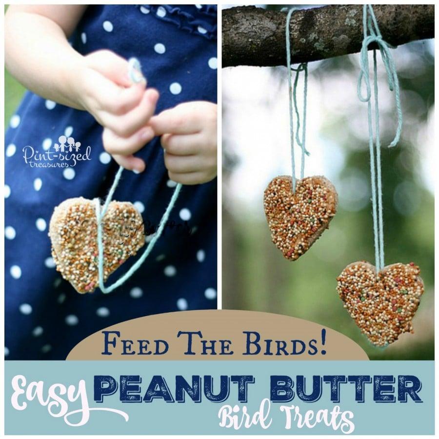bird treats made with peanut  butter