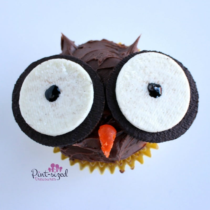 owl cupcake recipe