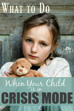 "What to Do When Your Child is in ""Crisis Mode"""