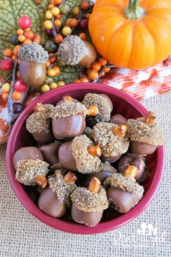 Edible Mini Acorns