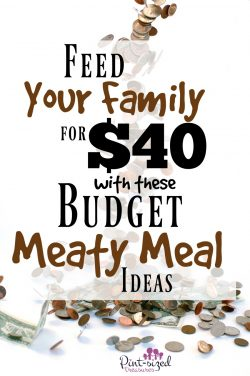 Feed Your Family for $40 Per Week with These Budget Meaty Meal Ideas!