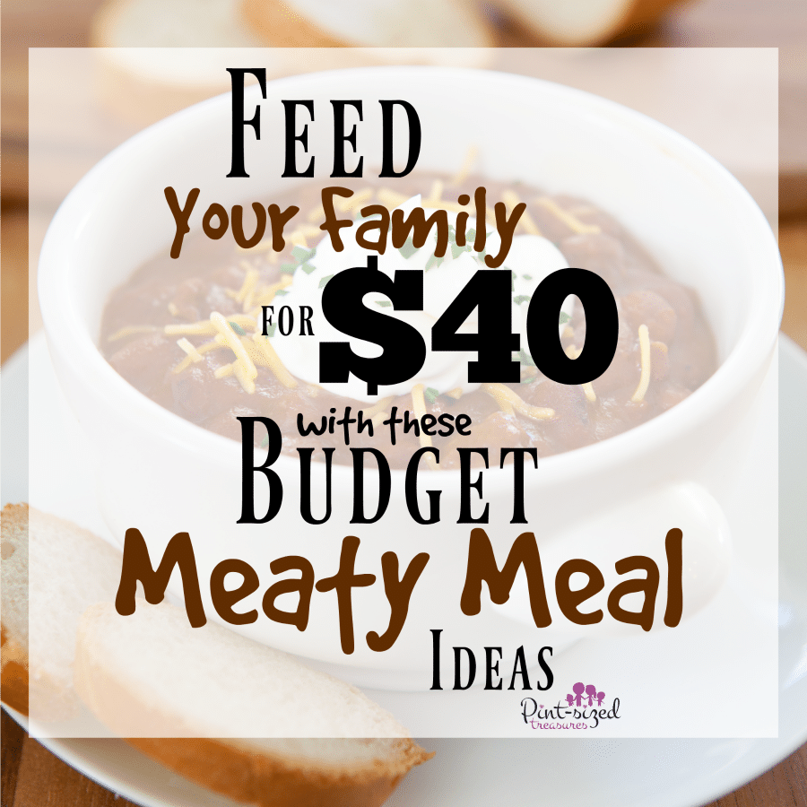 feed your family for $40 meaty meal ideas