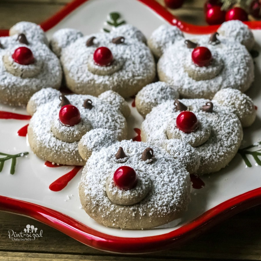 spiced polar bear cookies
