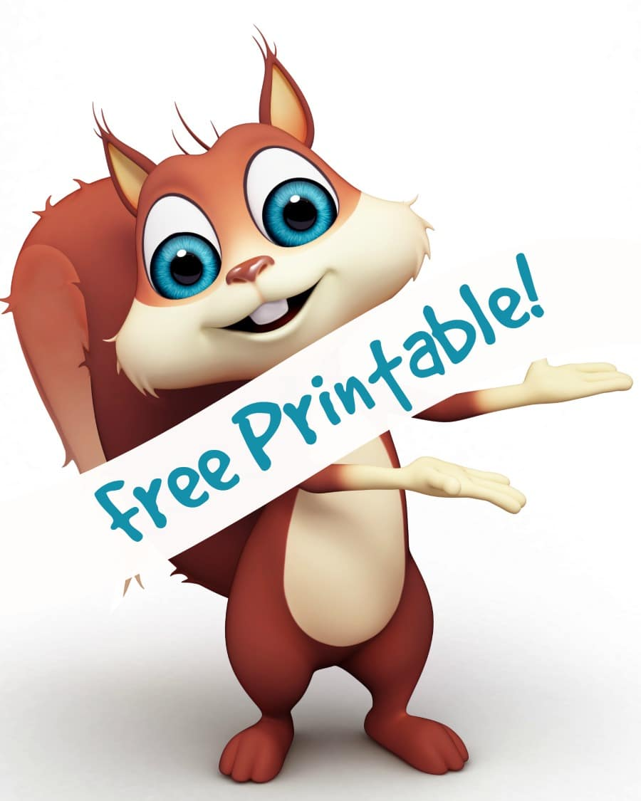 printable for squirrel activity for preschoolers