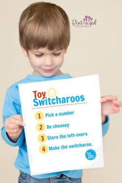 Toy Switchasroos — My Secret to Ending Toy Clutter