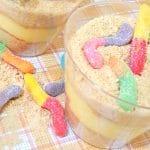 easy sand cup dessert