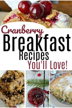 15 Cranberry Breakfast Recipes You'll LOVE!