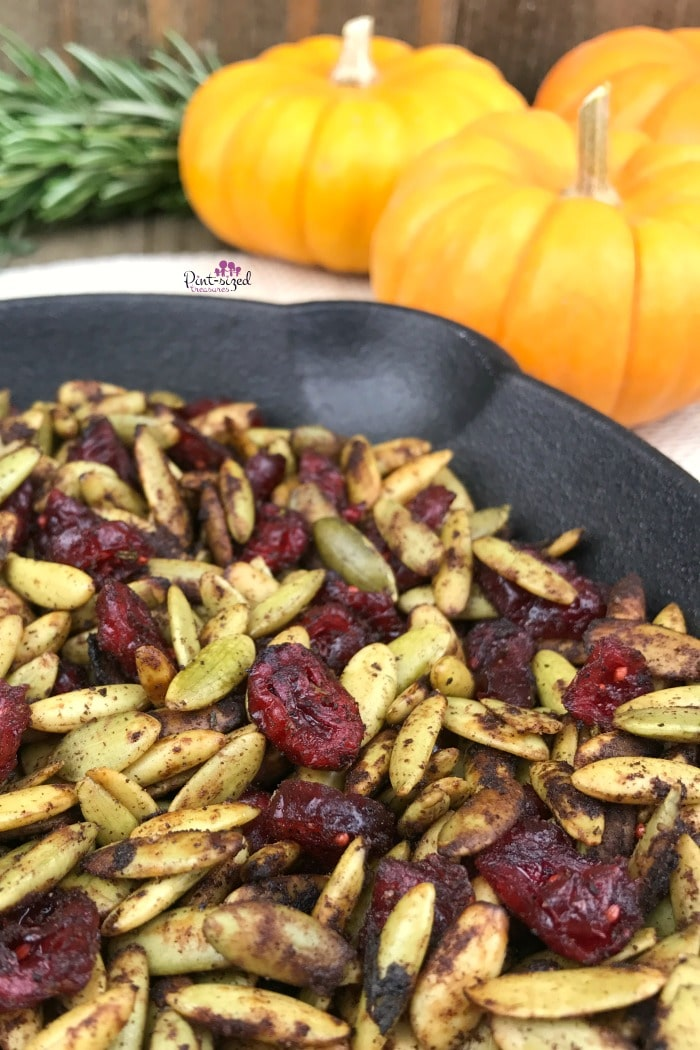 toasted pumpkin seeds with cranberries