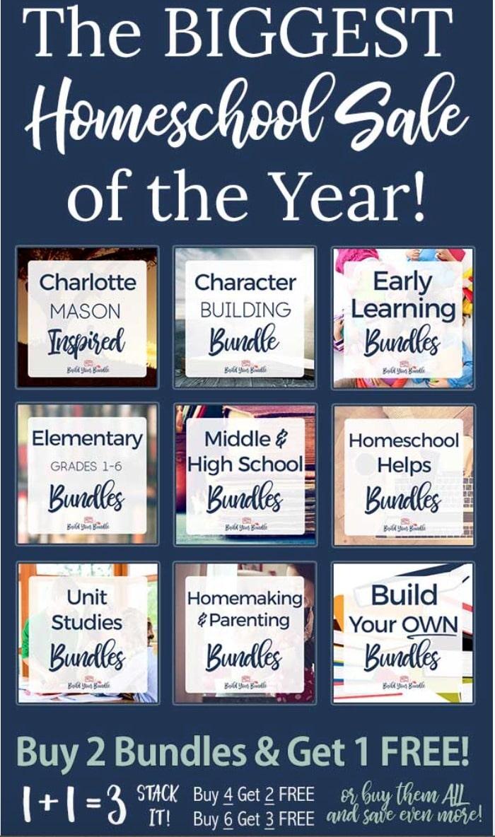 helps for successful homeschool moms