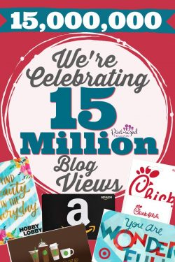 15 Million Blog Views Celebration