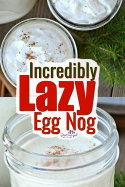 This homemade eggnog recipe is so incredible easy, it's LAZY! Fellow egg nog fans, it's time to celebrate with an almost done-for-you egg nog! Plus, it's eggless! #eggnogrecipe #egglesseggnog #easyeggnog #lazyrecipe #NewYearsEve #homemadeeggnog #holidaydrinks #easydrinkrecipe #holidaydrinks #easyeggnog