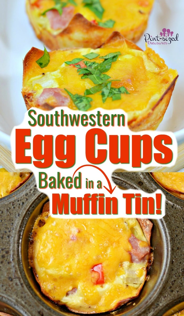 Incredibly easy egg cups that are filled with ham, cheese, Southwestern ingredients, spices and baked in a muffin tin! Perfect, super-fast, on-the-go breakfast for busy people! #eggcups #muffintinrecipes #easyeggcups #eggbake #eggmuffins #muffinomelet #bakedomeletes #easybreakfast #freezerfriendly #quickmeals #pintsizedtreasures