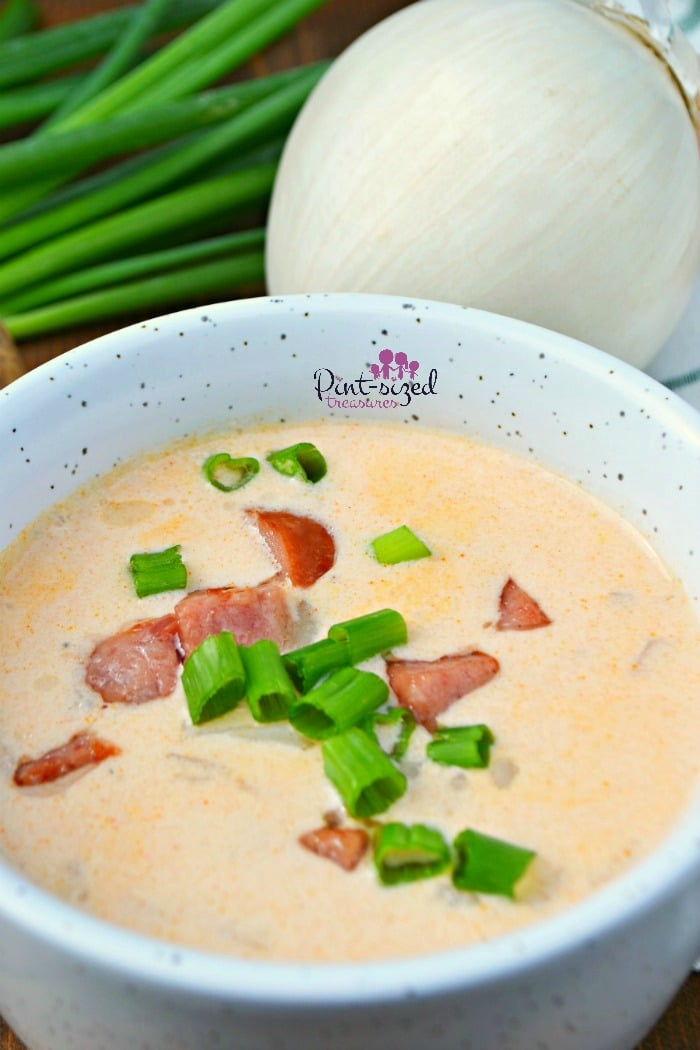 A large bowl of sausage and potato soup makes any day better!