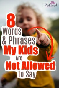 Stupid and shut-up are just two of the words not allowed in our home. We want our kids to have vocabulary that's pleasing to God. That's why these 8 words and phrases are off limits in our home. No kids are allowed to say them...period! A great parenting read for intentional parents!