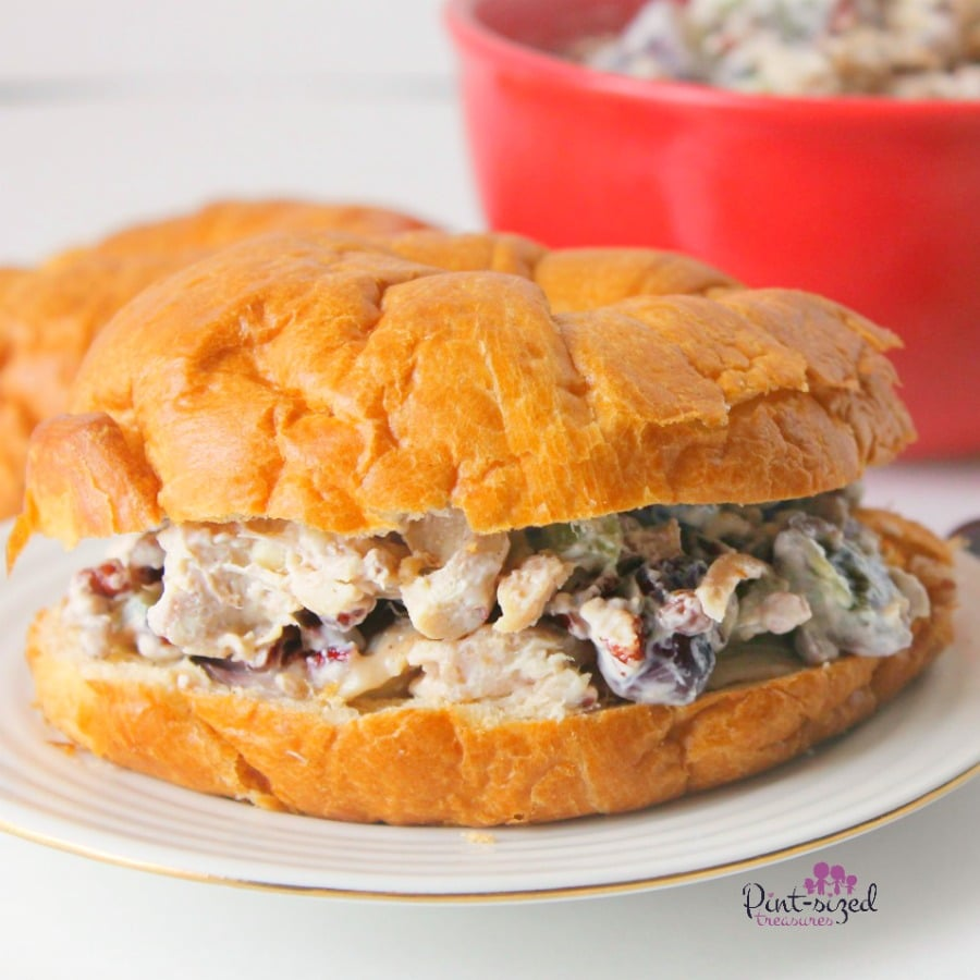 favorite chicken salad recipes