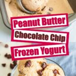 Peanut butter chocolate chip frozen yogurt