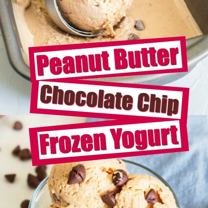 Peanut butter chocolate chip frozen yogurt