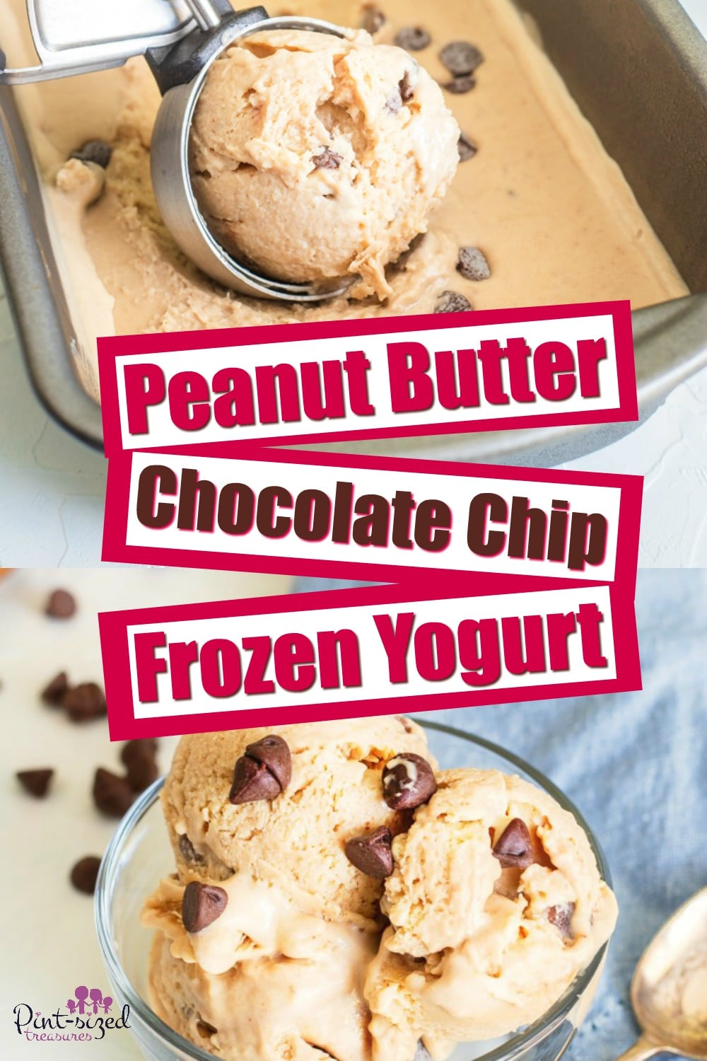 Peanut Butter Chocolate Chip Frozen Yogurt Recipe