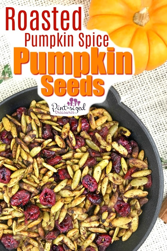 pumpkin spice pumpkin seeds recipe